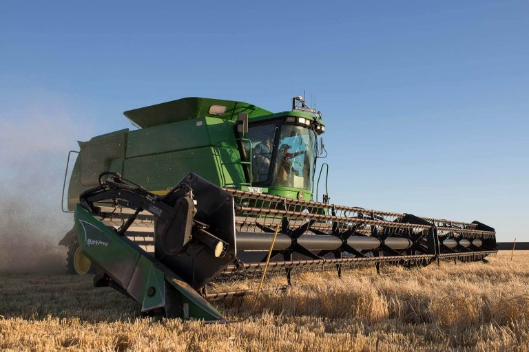Harvesting Welders Dog Barley